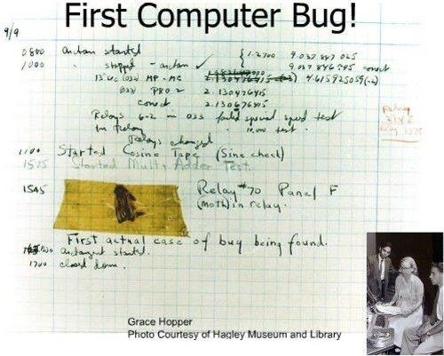firt-bug